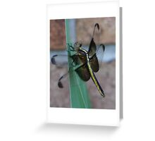 dragonfly day dreams Greeting Card