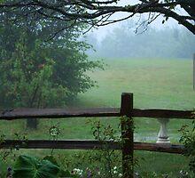 rain drops falling on fog by katpartridge