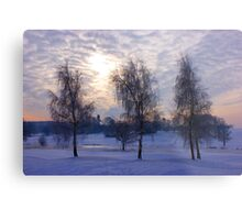 Three tree snow scene Metal Print