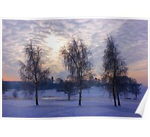 Three tree snow scene Poster