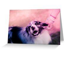 princess puppins Greeting Card