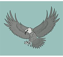 Eagle Flying Photographic Print