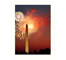 Independence Day on the National Mall Art Print