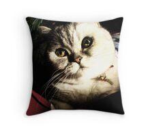 Tis the season to be jolly... Throw Pillow