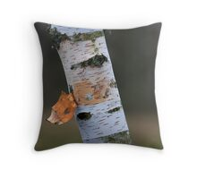 Paper Birch Tree Bark Throw Pillow
