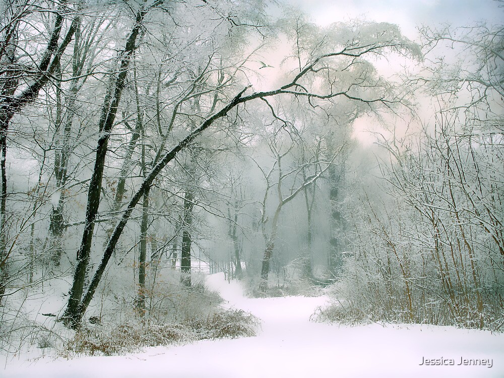 The Silence of Winter by Jessica Jenney