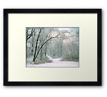 The Silence of Winter Framed Print
