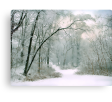 The Silence of Winter Canvas Print