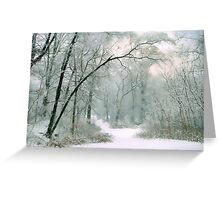 The Silence of Winter Greeting Card