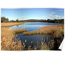 Bega River, NSW South Coast, Australia Poster