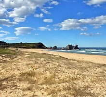Beauty Point, NSW South Coast, Australia by Cindy Ritchie