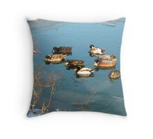 Ducks On Icy Pond Throw Pillow
