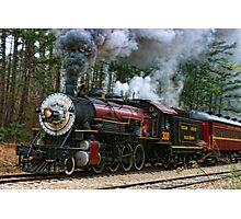 Texas State Railroad Photographic Print