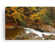 Laurel Creek Cascades II Canvas Print