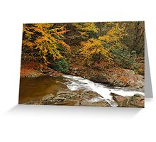 Laurel Creek Cascades II Greeting Card