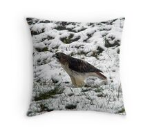 Red-tailed Hawk In Winter Throw Pillow