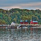 Spring Cove Evening by Richard Bean