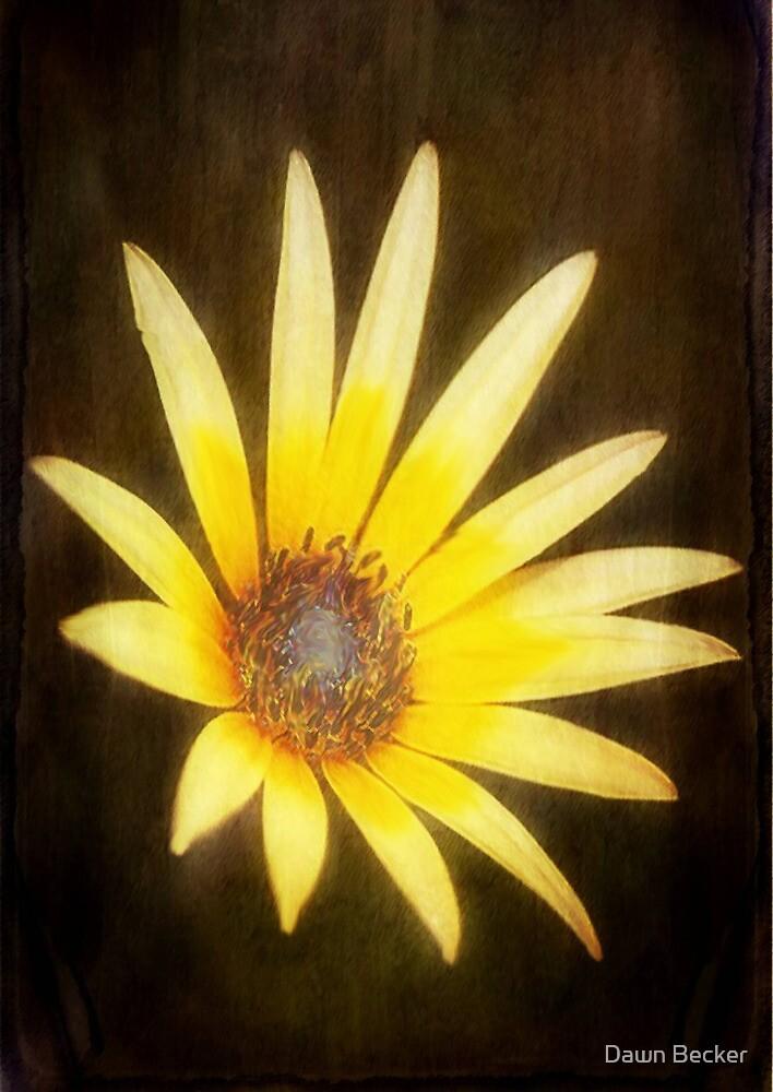 Lemon Yellow ©  by Dawn M. Becker