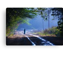walking in to the blues Canvas Print