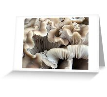 pleated in life Greeting Card