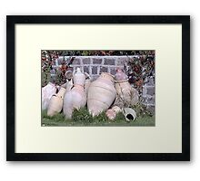 How did you spend your birthday in the year 2000? Framed Print