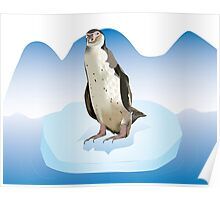 Pinguin on a ice block Poster