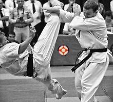 Fight by Sebastian Chalupa