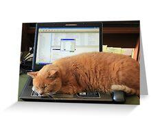 Keyboard Kat Greeting Card