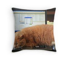 Keyboard Kat Throw Pillow