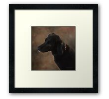 Reilly the Black Lab Framed Print