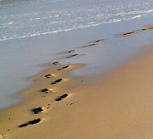 Footsteps on the beach - Apollo Bay, Victoria by Heather Samsa
