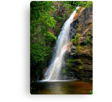 Refresh - Brazil Canvas Print
