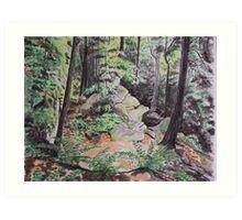 Ohio ledges #1 Art Print