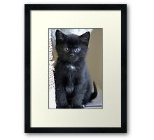 Small Things... Framed Print