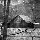 A Memory in Black and White by Christine Annas