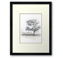 Quiet Pastures Framed Print