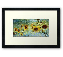 Sunshine Field Framed Print