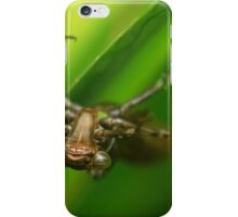 The dragonfly nymph emerging from the depths.  iPhone Case/Skin