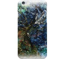 The Atlas Of Dreams - Color Plate 62 iPhone Case/Skin
