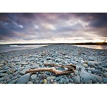 Cow Bay Sunset Photographic Print