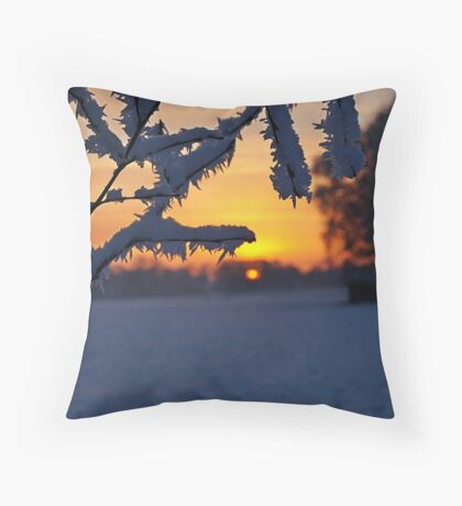 Iceflowers at sunset Throw Pillow