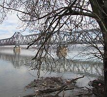 Bridge and Trash by branko stanic