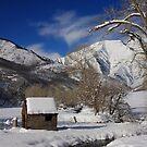 Winter's Retreat by Gene Praag