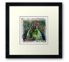 The Atlas Of Dreams - Color Plate 63 Framed Print
