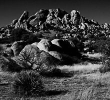 Texas Canyon Mono by Marvin Collins