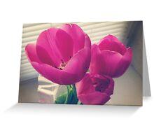 tender tulips flowers floral Greeting Card