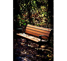 Restful Autumn Photographic Print