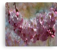 Dreaming for Spring Canvas Print