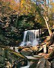 Big Autumn View at B. Reynolds Falls by Gene Walls