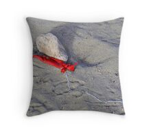 The beaches of our youth Throw Pillow